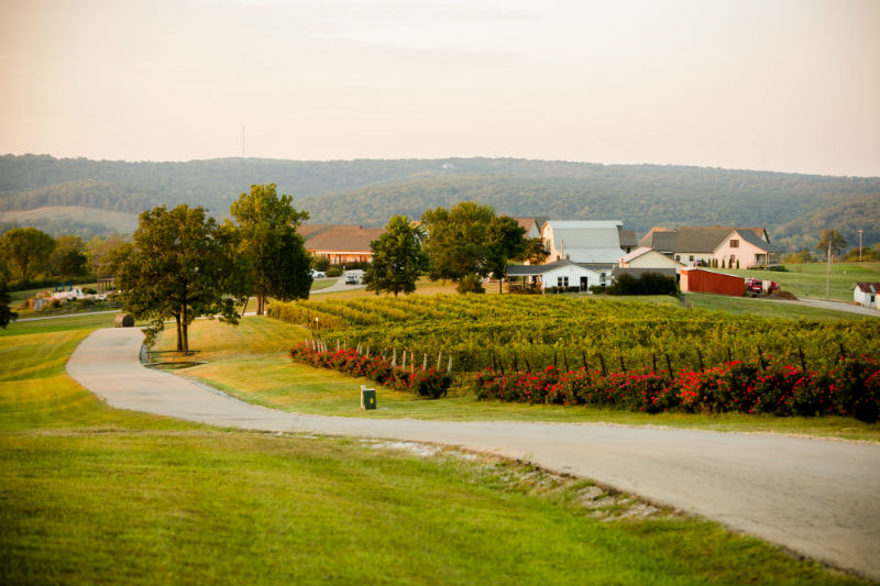 Wine Trails on the Great River Road